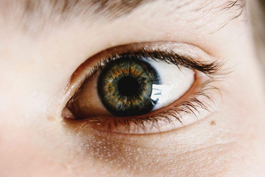 Curso optometría en daño cerebral adquirido
