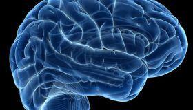 Neuroanatomía Descriptiva del Encéfalo y su Implicación Clínica.