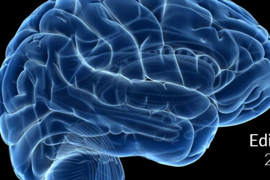 Neuroanatomía Descriptiva del Encéfalo y su Implicación Clínica. 2019